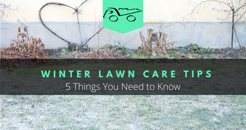 Winter Lawn Care Tips. 5 Things You Need to Know